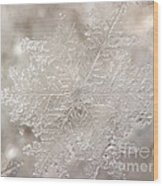 Ice No.004 Wood Print