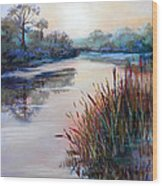 Ice On The Canal Wood Print by Heather Harman