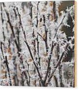Ice On Thornes Wood Print