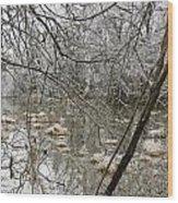 Ice Pond Wood Print