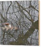 Ice Reflections 3 Wood Print