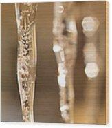 Ice Reflections Wood Print