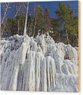 Ice Roots Wood Print