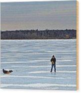 Ice Skipper Wood Print