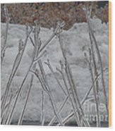 Ice Sticks Wood Print