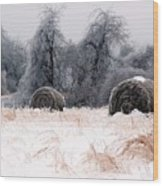 Ice Storm And Hay Bales In The Blue Rdige Mountains Wood Print