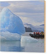 Iceberg Ahead Wood Print