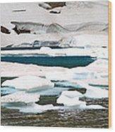 Icebergs In August Glacier International Peace Park Wood Print