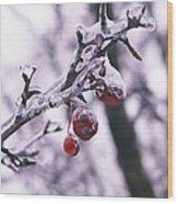 Iced Berries Wood Print