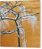 Iced Tree Wood Print