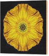 Iceland Poppy Flower Mandala Wood Print by David J Bookbinder