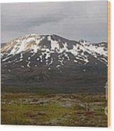 Icelandic Landscaope Wood Print