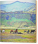 the Icelandic summer scene contains almost everything  Wood Print