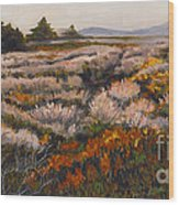 Iceplant And Chaparral Wood Print