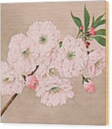 Ichi-yo - Single Leaf - Vintage Japan Watercolor Wood Print