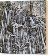 Icicles On Forbidden Drive Wood Print