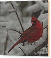 Iconic Avian Wood Print