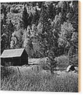 Iconic Cabin  Black And White Wood Print