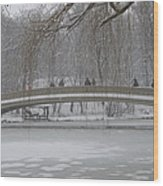 Icy Central Park Wood Print