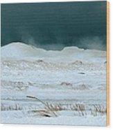 Icy Lake Michigan Wood Print