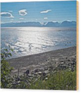 Icy-looking Kachemak Bay In Sunlight From Homer Spit-ak  Wood Print