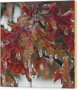 Icy Oak Wood Print