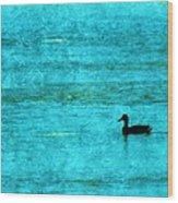 Icy Swim Wood Print
