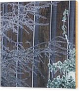 Icy Verticles Wood Print
