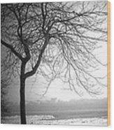 Icy Waters Of Lake Michigan Wood Print