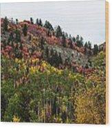 Idaho Colors In Fall Wood Print