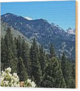 Idaho Mountain Side Wood Print