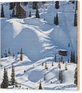 Idarado In The Winter Wood Print