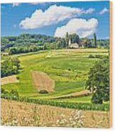 Idyllic Agricultural Landscape Panoramic View Wood Print