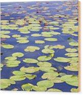 Idyllic Pond Wood Print