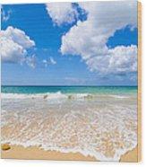 Idyllic Summer Beach Algarve Portugal Wood Print