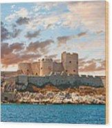 If Castle Wood Print