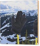 If The Glove Fits Wood Print