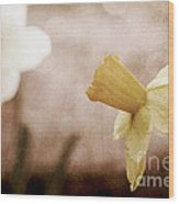 If These Flowers Could Speak  Wood Print
