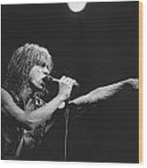 Iggy Pop Live At The Fillmore Wood Print