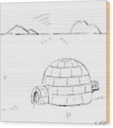 Igloo With Air Conditing Unit Wood Print