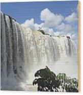 Iguacu Falls Wood Print