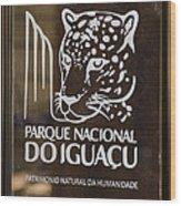 Iguacu National Park - Brazil Wood Print