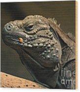 Iguana-7374 Wood Print