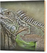 Iguana Named Mack Wood Print