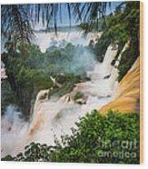 Iguazu Natural Wonder Wood Print