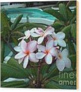 Ilan Ilan Flowers Wood Print