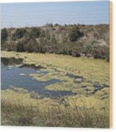 Ile De Re - Marshes Wood Print