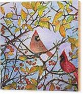 Illinois Cardinals  Wood Print