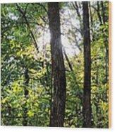 Iluminated Protectors Wood Print