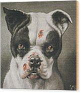 I'm A Bad Dog What Kind Of A Dog Are You Circa 1895 Wood Print by Aged Pixel